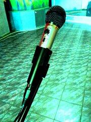 Профессиональный микрофон для караоке с эхо звуковым эффектом