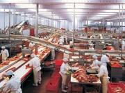 Требуются рабочие на мясокомбинат