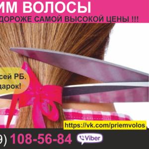 Продать волосы в Могилеве и области. Купим волосы по все стране.